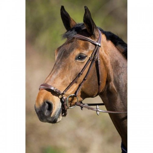 hfi-bridle-brown