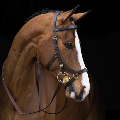 horseware-rambo-micklem-multibridle