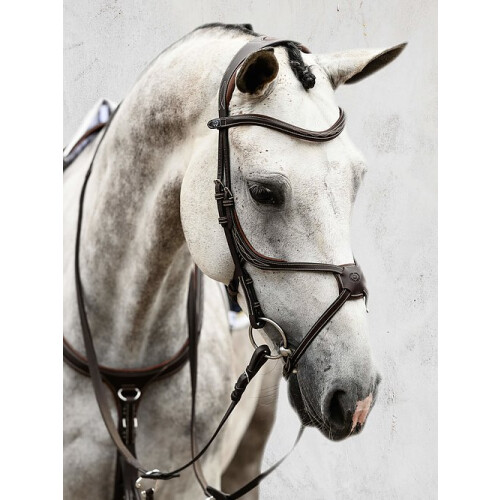 ps-of-sweden-athens-bridle