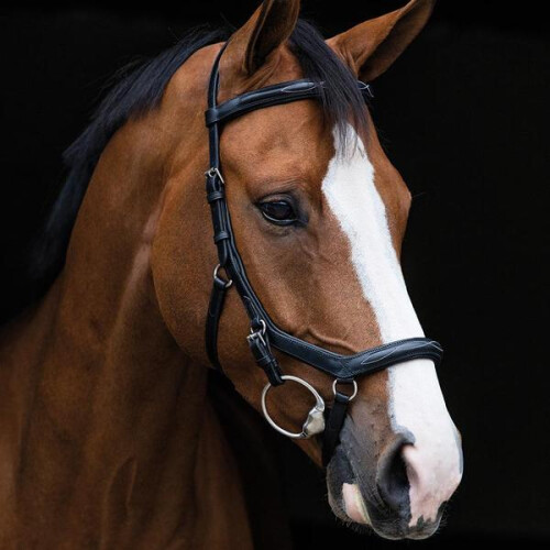 rambo-micklem-deluxe-competition-bridle
