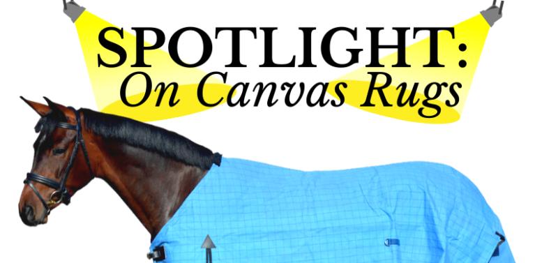 Spotlight on Canvas rugs